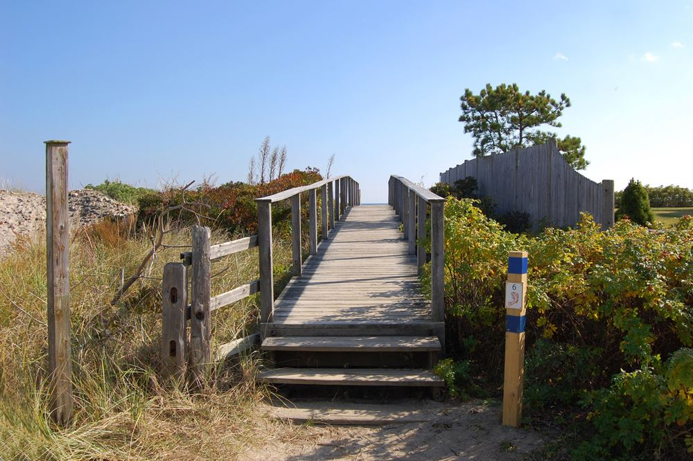 bridge_to_beach